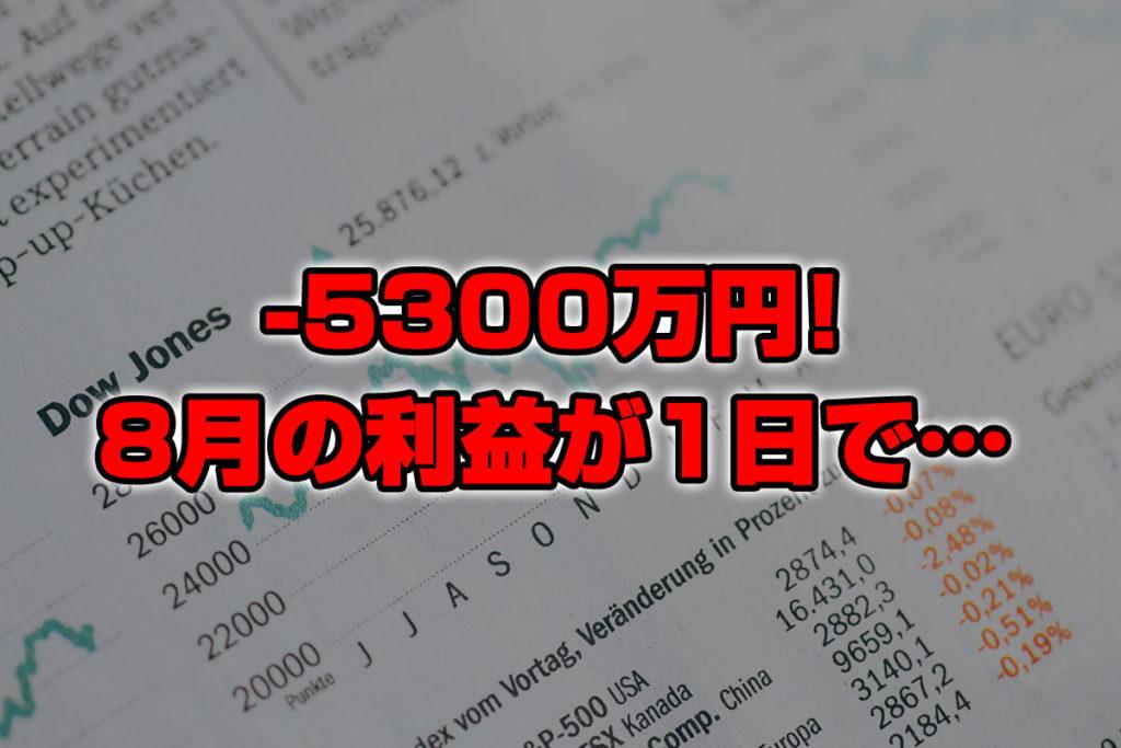 【投資報告】-5300万円!8月の利益が1日で全て無くなりました